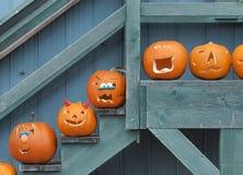 Geschnitzte Halloween-Kürbise auf Anzeige Stockfotos
