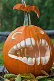 Geschnitzter Halloween-Kürbis Stockfotos