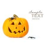 Geschnitzter Halloween-Kürbis mit Spinnen Lizenzfreie Stockfotografie