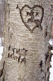 Geschnitzter Liebes-Baum Lizenzfreies Stockbild