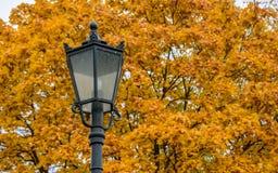 Geschnitztes Metallstraßenlaterne auf dem Hintergrund von goldenen Ahornbäumen des Herbstes in Kolomenskoye-Park am warmen Herbst Lizenzfreie Stockfotografie