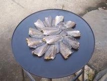 geschobener Fisch ist trocken Stockbild