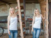 Geschossen vom schönen Mädchen nahe einem alten Bretterzaun Stilvolle Blickabnutzung: weiße grundlegende Spitze, Denimjeans Landh Lizenzfreies Stockfoto