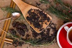 Geschossen vom trockenen schwarzen Tee mit Kiefer verzweigt sich Stockbild