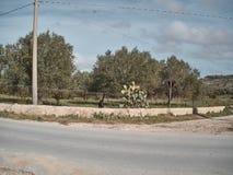 Geschossen von einer ländlichen Landschaft lizenzfreies stockbild
