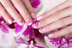 Geschossene schöne Maniküre mit Blumen auf weiblichen Fingern Nageldesign Nahaufnahme lizenzfreie stockfotos