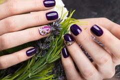 Geschossene schöne Maniküre mit Blumen auf weiblichen Fingern Nageldesign Nahaufnahme stockfotos