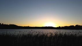 Geschoten op Canon 5D Mark II met Eerste l-Lenzen Schitterende zonsondergang op bosmeermening Mooie de zomerachtergronden stock videobeelden