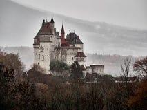 Geschoten van de Sint-bernard van Chateau Menthon, een historisch kasteel dichtbij Annecy royalty-vrije stock foto