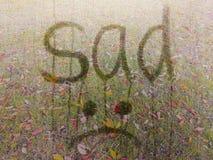 Geschrieben durch trauriges und Emoji auf misted Glas gegen Hintergrund der Herbstlandschaft Herbst, Sehnsucht, Einsamkeit, Probl lizenzfreie stockfotos