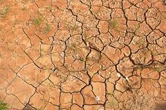 Geschroeide aarde. Stock Afbeelding