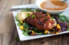 Geschwärzter Sommer-Salat Mahi Mahi Stockfotos