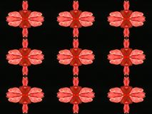 Geschwollene Blumenblätter Stockfotografie