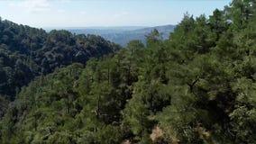 Gesehen von einem Berg in der Antenne ablage Draufsicht von exotischen Wäldern Schöner tropischer Wald an einem sonnigen Tag lizenzfreies stockfoto