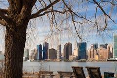Gesehener durch Baum New York City Skyline am Bock-Nationalpark in Long Island-Stadt lizenzfreie stockfotografie