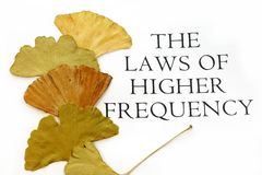 Gesetz des Highier Frequenz-Textes Lizenzfreie Stockbilder