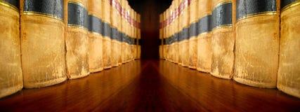 Gesetzbücher auf den Regalen, die sich gegenüberstellen Stockfotos