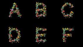 Gesetzte Blumenbuchstaben A, B, C, D, E, F stock footage
