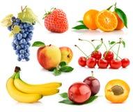 Gesetzte frische Früchte mit grünen Blättern Lizenzfreie Stockbilder