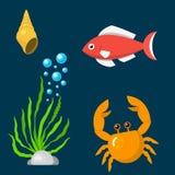 Gesetzte lustige Seetierunterwassergeschöpfwasserzeichentrickfilm-figuren schälen Aquarium sealife Vektorillustration Lizenzfreie Stockbilder