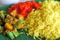 Gesetzte Mahlzeit des gesunden indischen Vegetariers Lizenzfreies Stockbild
