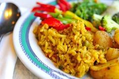 Gesetzte Mahlzeit des gesunden indischen Vegetariers Stockfotografie