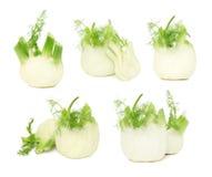 Gesetzte reife fennels (lokalisiert) Stockfotografie