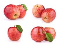 Gesetzte rote Apfelfrüchte getrennt auf Weiß Lizenzfreies Stockfoto