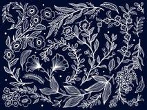 Gesetzte Sammlungshand der abstrakten Natur gezeichnet Wei?e Farbe im schwarzen Hintergrund Ethnische Verzierung, Blumendruck, Te stock abbildung