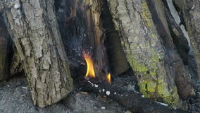 Gesetztes Feuer des Lagerfeuers stock footage