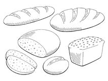 Gesetztes grafisches schwarzes Weiß des Brotes lokalisierte Lebensmittelskizzen-Illustrationsvektor vektor abbildung