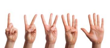 Gesetztes lokalisiert der Zählung von Händen auf einem weißen Hintergrund Lizenzfreies Stockbild