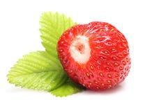 Gesetztes Makro der Erdbeere mit Blättern Lizenzfreie Stockfotografie