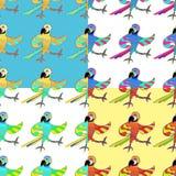 Gesetztes nahtloses Muster mit parro Goldfröhlichem Tanzenspaß Karibischer Meere Lizenzfreies Stockbild