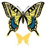 Gesetztes Schattenbild des Schmetterlingsvektors Stockbilder