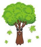Gesicht des Baums mit Blättern Stockfoto