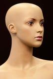 Gesicht des Mädchenmannequins Lizenzfreie Stockbilder
