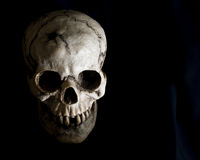 Gesicht des menschlichen Schädels im Schatten Lizenzfreie Stockfotografie
