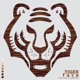 Gesicht des Tigers auf hölzerner Beschaffenheit Stockbilder