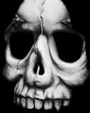 Gesicht des Todes Stockfotografie
