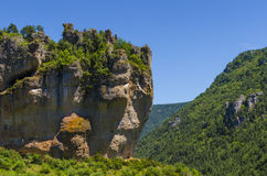 Gesicht im Felsen Stockbild
