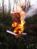 Gesicht im Feuer Stockbild