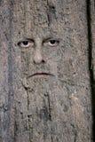 Gesicht im Holz Lizenzfreies Stockfoto