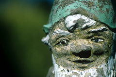 Gesicht von Gnome. Stockfotos