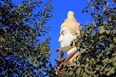 Gesicht von Shiva hinter Laub Stockfotos