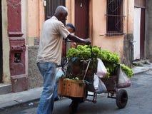 Gesichter Kuba-des Gemüsewarenkorb-Verkäufers stockbilder
