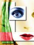 Gesichts-junge Frauen-Auszug   lizenzfreie abbildung