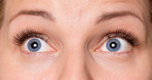 Gesichtsfrau mit Augen und den Wimpern Lizenzfreies Stockbild