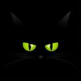 Gesichtshintergrund der schwarzen Katze Lizenzfreies Stockfoto