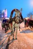 Gesierd paard getrokken vervoer stock fotografie
